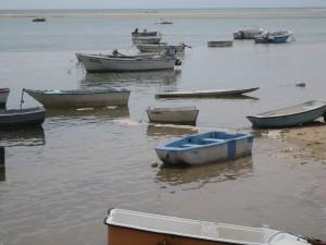 Boats at Fabrica