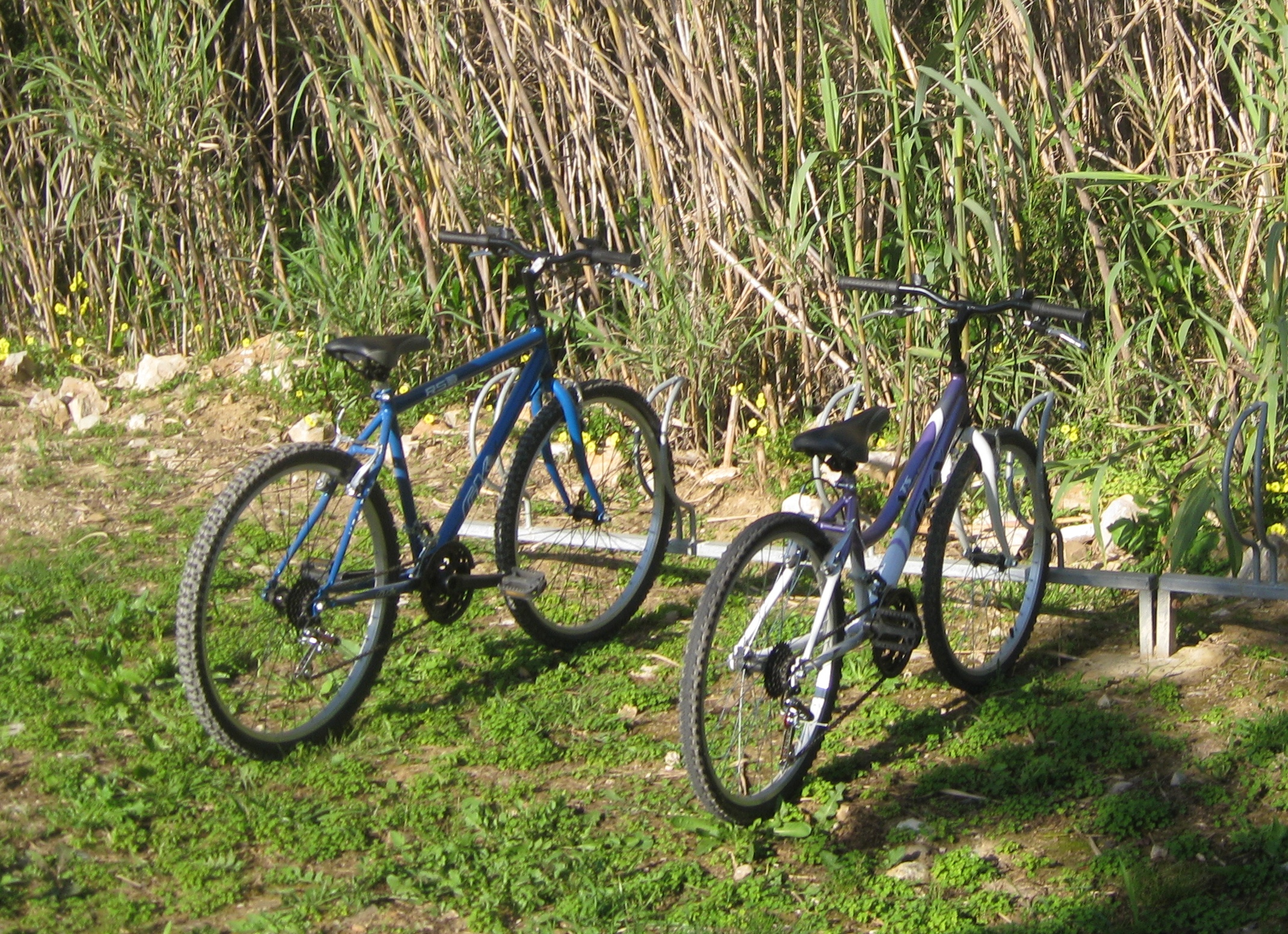 Cycling on the Ecovia Algarve